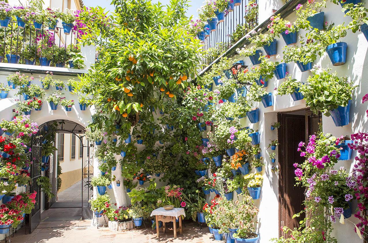 La Fiesta de los Patios de Córdoba - Sevilla Visita